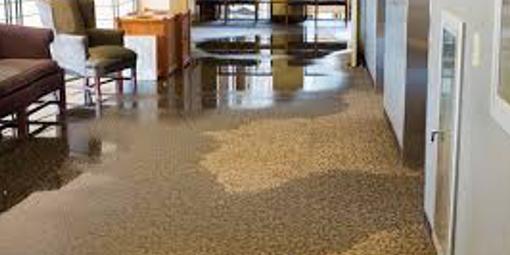Water soaked carpet