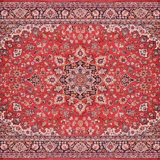 Don't Steam Cleam a rug